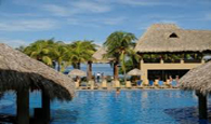 Flamingo Beach Resort And